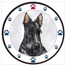 Scottish Terrier N Paws Poster