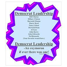 """""""Democrat Leaders?"""" Poster"""