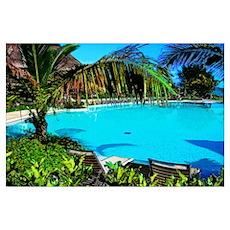 Tropical Pool Poster