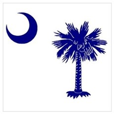 Palmetto and Crescent Framed Print