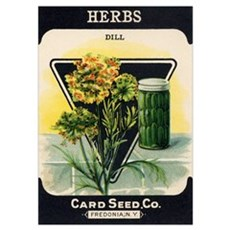 Dill Herbs antique seed packe Poster