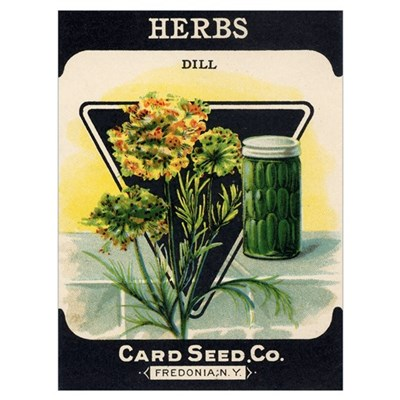 Dill Herbs antique seed packe Framed Print