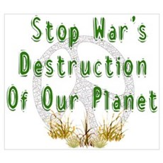 Stop War's Destruction Poster