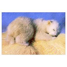 'Sleeping Teddy' Poster
