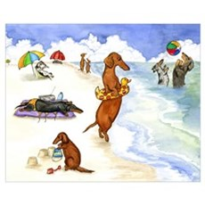 Dog Beach Poster