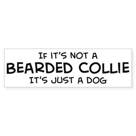 If it's not a Bearded Collie Bumper Sticker