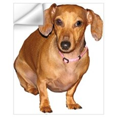 Helaine's Doxie Wall Decal