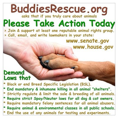 Take Action Poster