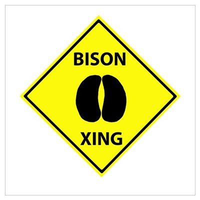 Bison Crossing Poster