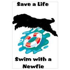 Swim With A Newfie! Poster