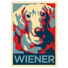 Vote Wiener! Poster