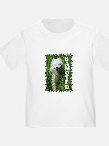 Samoyed In Grass T