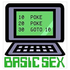 Basic Sex Poster