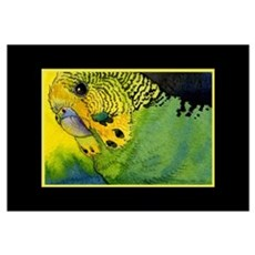 Green Budgie Poster