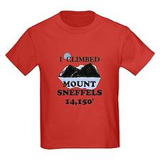 MOUNT SNEFFELS T