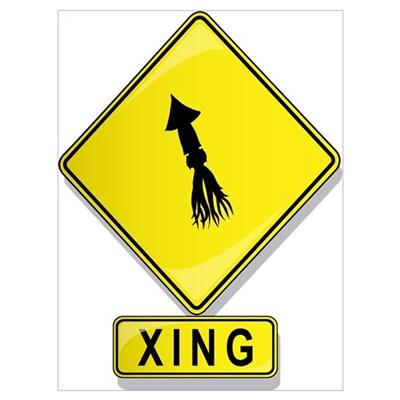 Squid XING Poster