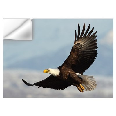 Eagle Flight Wall Decal