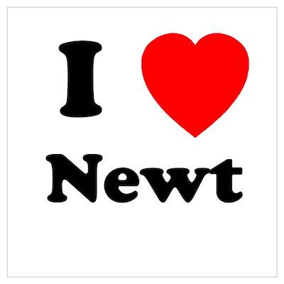 I heart Newt Poster