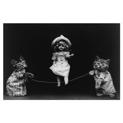 FUNNY CATS 11x17 Poster