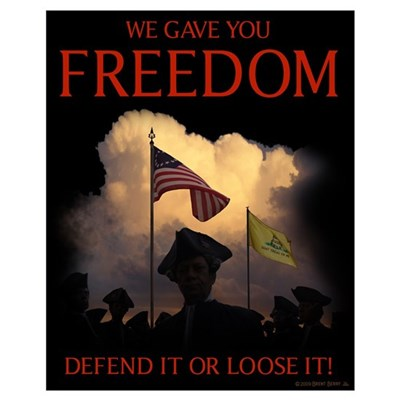 Freedom - Defend it Poster