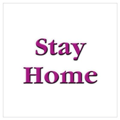 Stay Home Euchre Poster