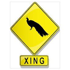 Peacock XING Poster