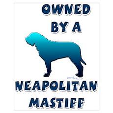 Neapolitan Silhouette Poster