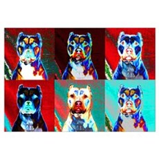 Pit Bull Terrier Pop Art Violet Framed Print