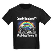 Double Rainbow, Worn T