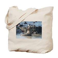 Sea Lion 1 Tote Bag