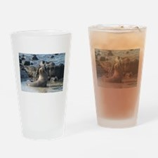 Sea Lion 1 Drinking Glass
