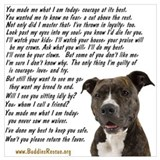 Animal rescue Posters