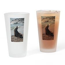 Sea Lion 2 Drinking Glass