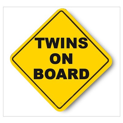 Twins on board Poster