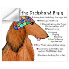 Dachshund Brain (long) Wall Decal