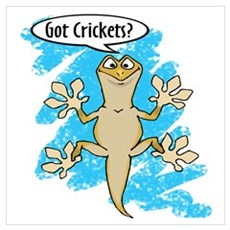Funny Carton Gecko Poster