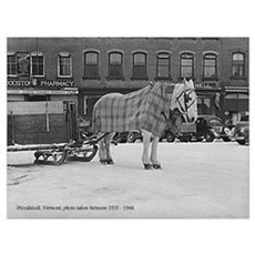 Horse-Woodstock Poster