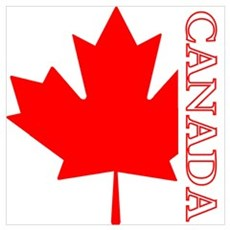 Candian Maple Leaf Poster