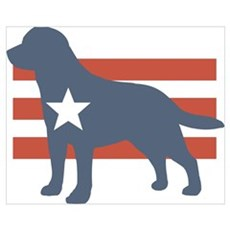 Patriotic Labrador Retriever Poster