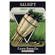 Salsify antique seed packet Canvas Art