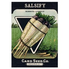 Salsify antique seed packet Poster