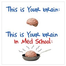 Brain in Med School Poster