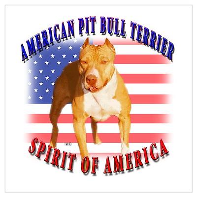 APBT spirit of America design Poster