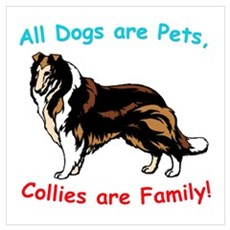 Collie Collies Family Framed Print
