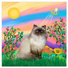 Day Star / Himalayan Cat Poster