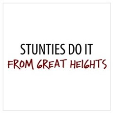 Great Heights Stuntie Poster