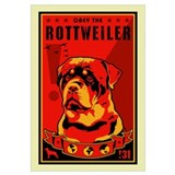 Rottweiler Wrapped Canvas Art