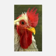 Rooster 2 Sticker (Rectangle)