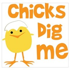 Chicks Dig Me Poster