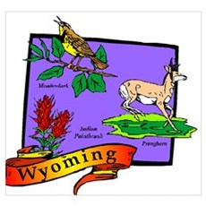 Symbols of Wyoming Framed Print